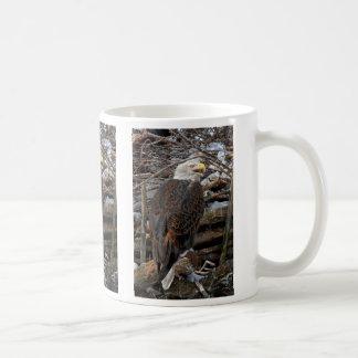 Bald Eagle by Snowy Nest Mug