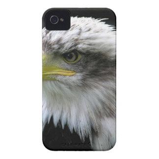 bald-eagle Case-Mate iPhone 4 cases
