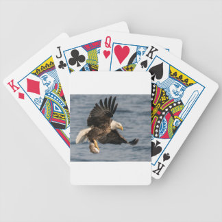 Bald Eagle Catching Food Bicycle Playing Cards