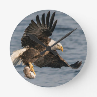 Bald Eagle Catching Food Clocks