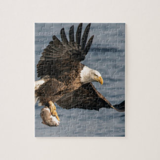Bald Eagle Catching Food Jigsaw Puzzle