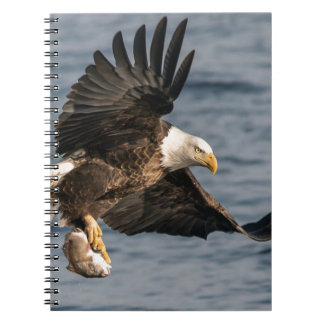 Bald Eagle Catching Food Notebook