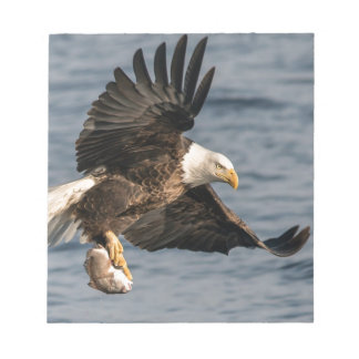Bald Eagle Catching Food Notepad