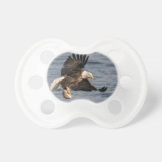 Bald Eagle Catching Food Pacifier