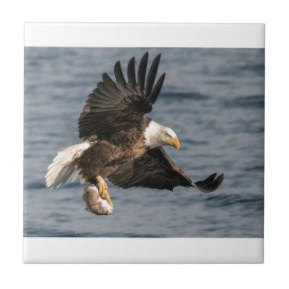Bald Eagle Catching Food Tiles