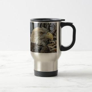 Bald Eagle Close Up Travel Mug