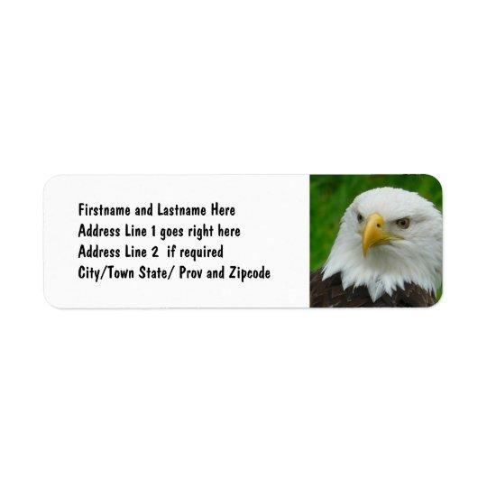 Bald Eagle - Close up Wild Eagle Photo Return Address Label