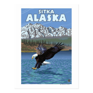 Bald Eagle Diving - Sitka, Alaska Postcard