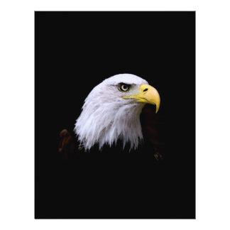 Bald Eagle Flyer