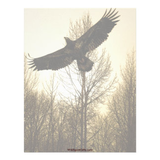 BALD EAGLE & FOREST Letterhead Design