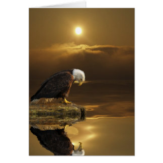 Bald Eagle GRATITUDE Series Card