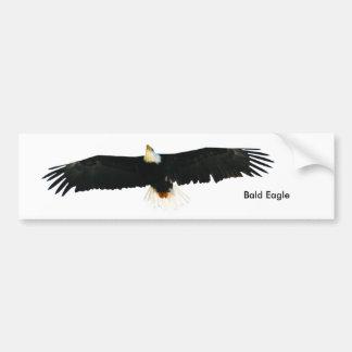 Bald Eagle image for Bumper-Sticker Bumper Sticker