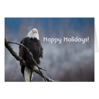 Bald Eagle in a tree holiday card