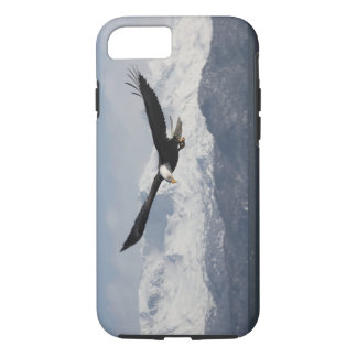Bald Eagle in Flight, Haliaeetus leucocephalus, iPhone 8/7 Case