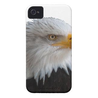 Bald eagle iPhone 4 Case-Mate case