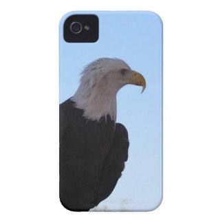 Bald Eagle iPhone 4 Covers