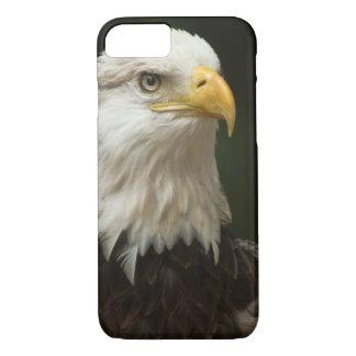 Bald Eagle iPhone 7 Case