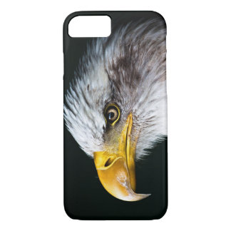 Bald Eagle Iphone Cell Phone Case