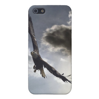 Bald Eagle iPhone Speck Case iPhone 5 Cases