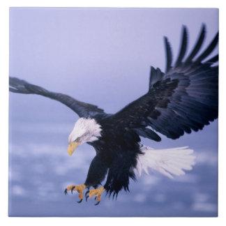 Bald Eagle Landing Wings Spread in a Storm, Tile