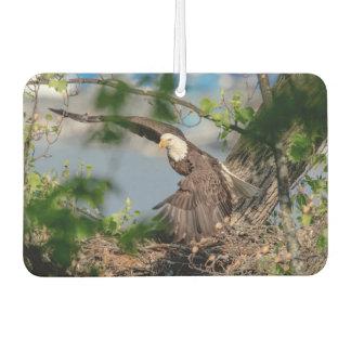 Bald Eagle leaving the nest Air Freshener