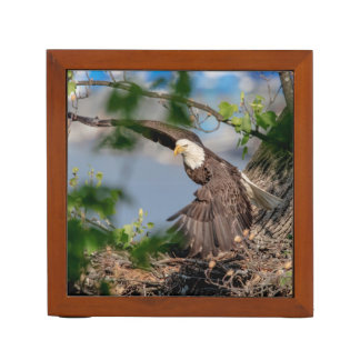 Bald Eagle leaving the nest Desk Organizer