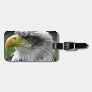 bald-eagle luggage tag
