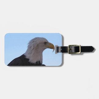 Bald Eagle Luggage Tag