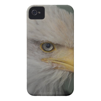 Bald Eagle of Alaska U.S.A. Case-Mate iPhone 4 Cases