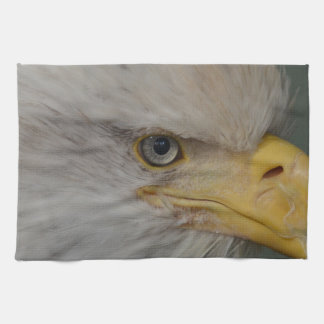 Bald Eagle of Alaska U.S.A. Kitchen Towel