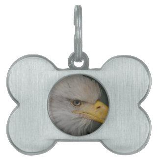 Bald Eagle of Alaska U.S.A. Pet Name Tag