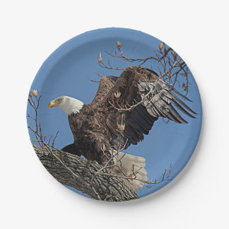 Bald Eagle on a tree branch 7 Inch Paper Plate
