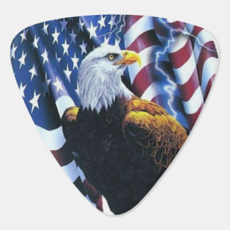 Bald Eagle on American Flag Lightening Guitar Pick