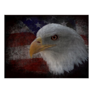 Bald Eagle on Flag Print