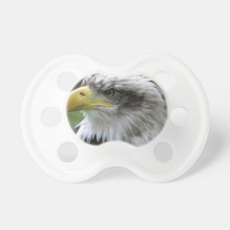 bald-eagle pacifier