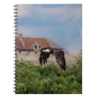 Bald Eagle passing Fort Ticonderoga Notebooks