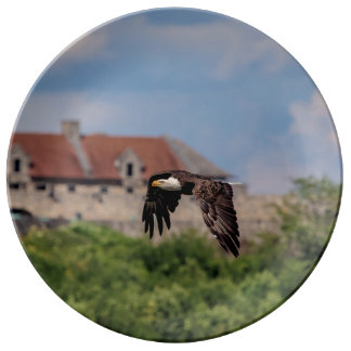 Bald Eagle passing Fort Ticonderoga Plate