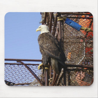 Bald Eagle Perched on Crab Pots Mouse Pad