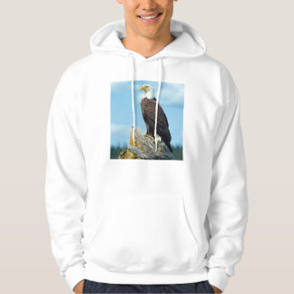 Bald Eagle perched on log, Canada Hoodie