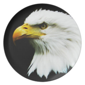 Bald Eagle Photo on Black Plate