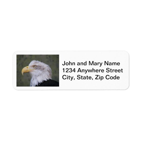 Bald Eagle Photo Return Address Labels