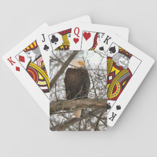 Bald Eagle Pinery Narrows Playing Cards
