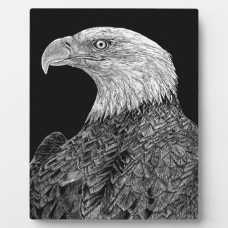 Bald Eagle Scratchboard Plaque