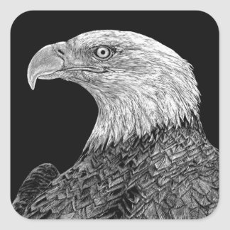 Bald Eagle Scratchboard Square Sticker