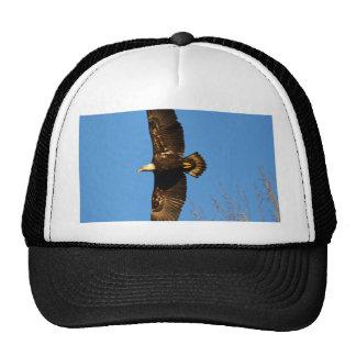 Bald Eagle Soaring Over Trees Mesh Hat