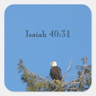 Bald Eagle Sticker