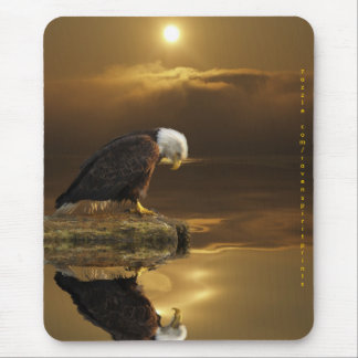 BALD EAGLE & SUNLIGHT Mousepad