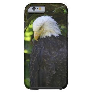 Bald Eagle Tough iPhone 6 Case