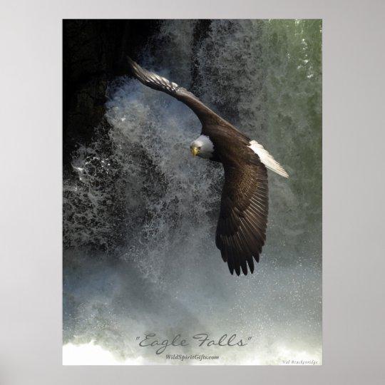 Bald Eagle & Waterfall Poster