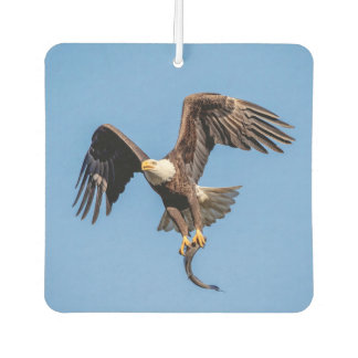 Bald Eagle with a fish Air Freshener